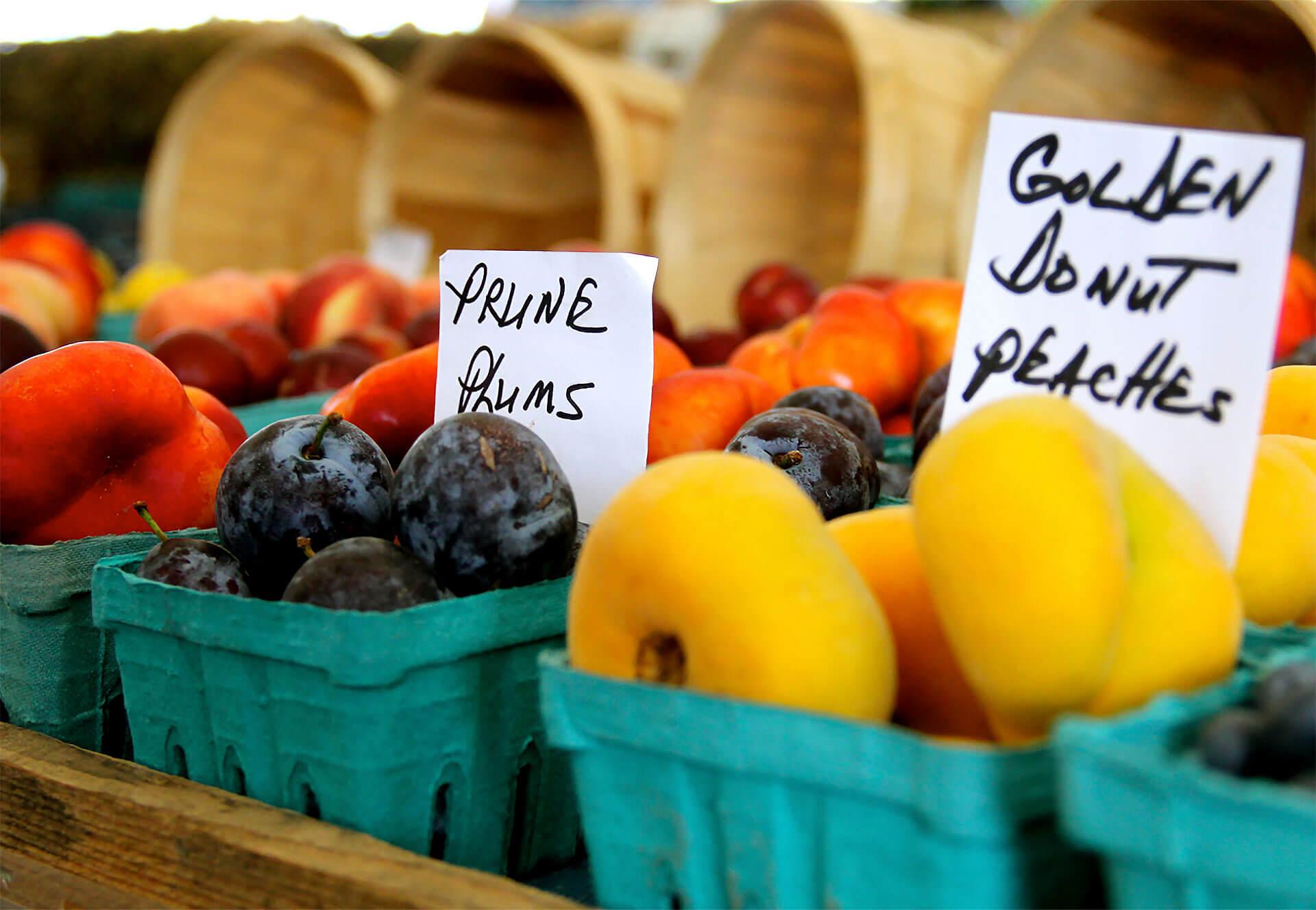 Palm Desert Farmer's Market